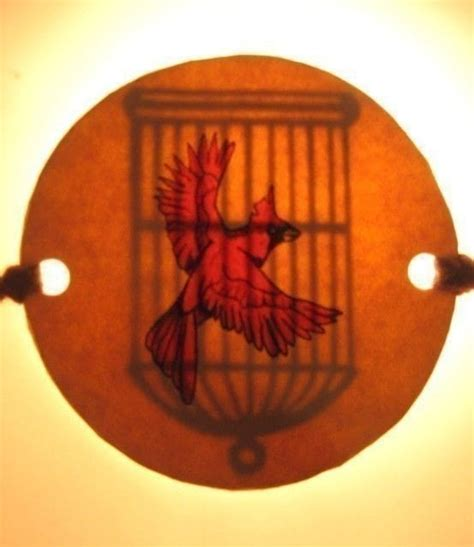 Bird Cage Optical Illusion · How To Make A Toy · Art