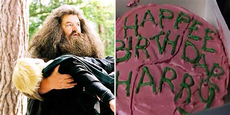 Most WTF Things Hagrid Has Ever Done   Screen Rant
