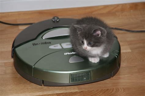 Roomba 870 vs Roomba 880 - The Ultimate Buyer's Guide